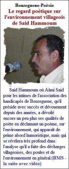 saidhammoum230